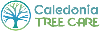 caledonia-tree-care-logo